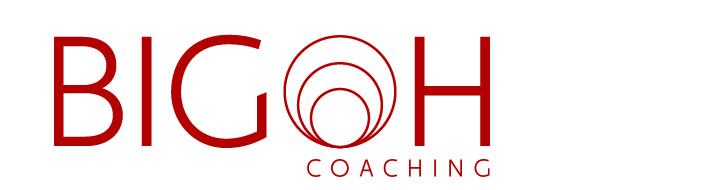 Bigoh Logo Red